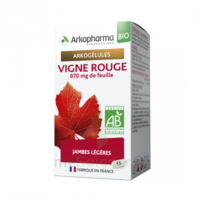 Arkogélules Vigne Rouge Bio Gélules Fl/45 à NIMES