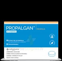 Aragan Propalgan Comprimés Orodispersibles Adulte B/20 à NIMES