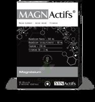 Synactifs Magnactifs Gélules B/60 à NIMES