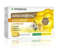 Arkoroyal Propolis Pastilles Adoucissante Gorge Guimauve Miel Citron B/24 à NIMES