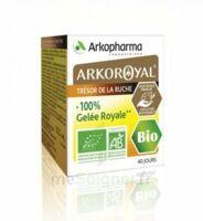 Arkoroyal 100% Gelée Royale Bio Gelée Pot/40g à NIMES