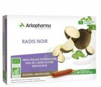 Arkofluide Bio Ultraextract Radis Noir Solution Buvable 20 Ampoules/10ml à NIMES