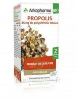 Arkogélules Propolis Bio Gélules Fl/45 à NIMES