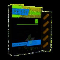 Synactifs Respigreen Bio Gélules B/10 à NIMES