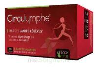Santé Verte Circulymphe Triple Actions B/60 à NIMES