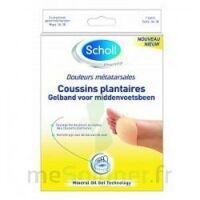 Scholl Coussin Plantaire Douleurs Métatarsales T2 à NIMES