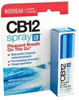 Cb 12 Spray Haleine Fraîche 15ml à NIMES