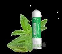 Puressentiel Respiratoire Inhaleur Respiratoire Aux 19 Huiles Essentielles - 1 Ml à NIMES