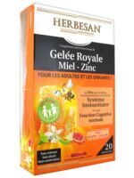 Herbesan Gelée Royale Miel - Zinc Dès 4 Ans B/20 à NIMES