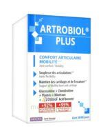 Ineldea Artrobiol Plus 120 Gélules à NIMES