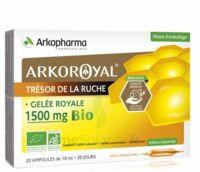 Arkoroyal Gelée Royale Bio 1500 Mg Solution Buvable 20 Ampoules/10ml à NIMES