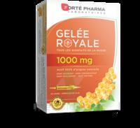 Forte Pharma Gelée Royale 1000 Mg Solution Buvable 20 Ampoules/10ml à NIMES