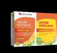 Forte Pharma Gelée Royale 1000 Mg Solution Buvable 2*b/20 Ampoules/10ml à NIMES