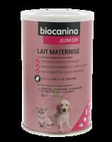 Biocanina Lait Poudre Maternisé B/400g à NIMES
