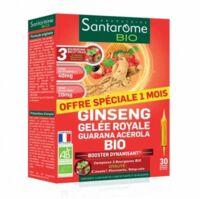 Santarome Bio Ginseng Gelée Royale Guarana Acérola Solution Buvable 30 Ampoules/10ml à NIMES