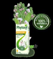 Phytoxil Toux Sans Sucre Sirop Adulte Enfant +2 Ans Fl/120ml à NIMES