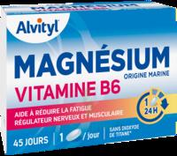 Govital Magnésium Vitamine B6 Comprimés B/45 à NIMES