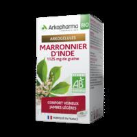 Arkogélules Marronnier D'inde Bio Gélules Fl/45 à NIMES